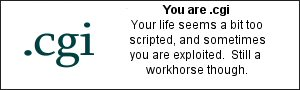 You are .cgi Your life seems a bit too scripted, and sometimes you are exploited.  Still a workhorse though.