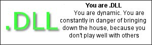 You are .dll You are dynamic.  You are constantly in danger of bringing down the house, because you don't play well with others.