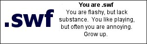 You are .swf	 You are flashy, but lack substance.You like playing, but often you are annoying. Grow up.