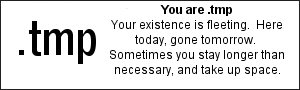 You are .tmp  Your existence is fleeting.  Here today, gone tomorrow.  Sometimes you stay longer than necessary, and take up space.