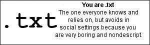 You are .txt The one everybody knows and relies on, but avoids in social settings because you're very boring and non-descript.