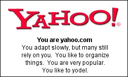 You are yahoo.com You adapt slowly, but many still rely on you.  You like to organize things.  You are very popular. You like to yodel.